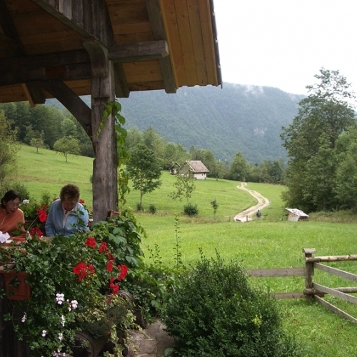 Guided walking in Slovenia-Slovenia - a typical mountain hit scene